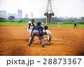 野球 ベースボール 白球の写真 28873367