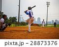 野球 ベースボール 白球の写真 28873376