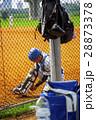 野球 ベースボール 白球の写真 28873378