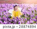 フェアリー 妖精 女の子の写真 28874894