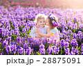 ガーデン 子供 お花の写真 28875091