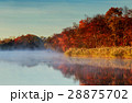 秋 静か 霧の写真 28875702