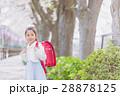 小学生 女の子 入学の写真 28878125