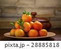 オレンジ色 オレンジ 橙の写真 28885818