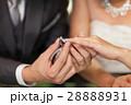 ウェディング ウエディング 結婚の写真 28888931