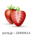 Whole strawberry and a half strawberry 28890614