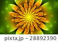 フラクタル フラワー 花のイラスト 28892390