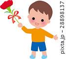 母の日 カーネーション花束 男の子笑顔 28898137