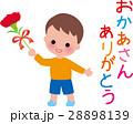 母の日 カーネーション花束 男の子笑顔 28898139