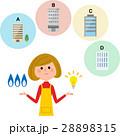 電力自由化 女性 人物のイラスト 28898315