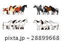 馬のバナー セット 向き合う 28899668