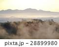 朝霧の丘 28899980