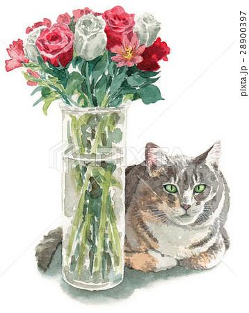 ガラス瓶に生けた花と猫 28900397