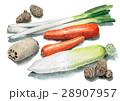 根菜5種類 28907957