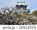 大阪城 城 建物の写真 28918359