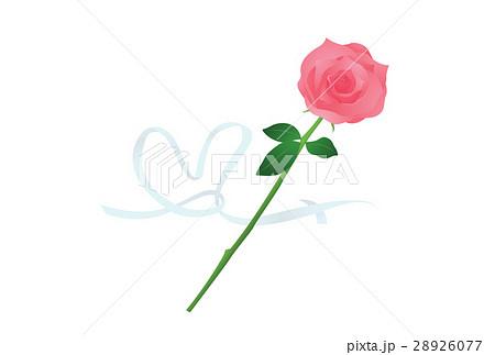 薔薇 28926077