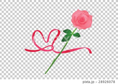 薔薇 28926078