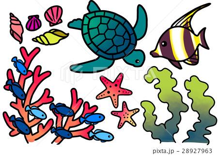 南国の海の魚たち 28927963