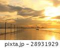 夕暮れの江川海岸 28931929
