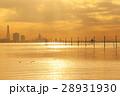 夕方の江川海岸 光輝く海 28931930