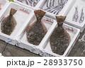 魚市場 ヒラメ 28933750