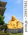 宝覚寺 大仏 宝覚禅寺の写真 28937882