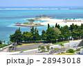海洋博公園 エメラルドビーチ 沖縄の写真 28943018