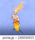 人魚 28956955