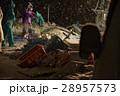 水揚げ 漁師 漁業の写真 28957573
