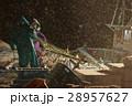 漁師 漁 深夜の写真 28957627
