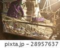 水揚げ 漁師 漁業の写真 28957637