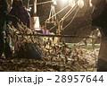 日本の漁業 イメージ 28957644