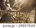 漁師 男性 漁船の写真 28957649
