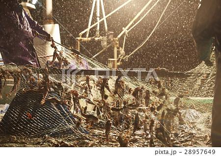 日本の漁業 イメージ 28957649