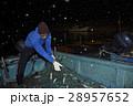 漁師 仕事 男性の写真 28957652
