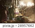 水揚げ 漁師 漁業の写真 28957662