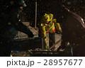 作業員 漁師 男性の写真 28957677