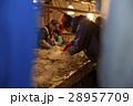 作業員 漁師 水産業の写真 28957709