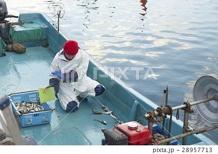 日本の漁業 イメージ 28957713