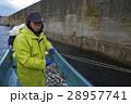 作業員 漁師 男性の写真 28957741