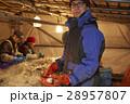 水産業 漁業 男性の写真 28957807