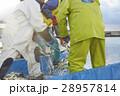 働く漁師たち 28957814