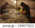 水産業 漁業 男性の写真 28957822
