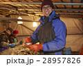 水産業 漁業 男性の写真 28957826
