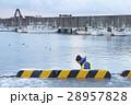 漁師 漁業 男性の写真 28957828