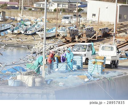 昼の漁港 28957835