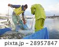 働く漁師たち 28957847