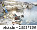 昼の漁港 28957866