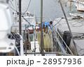 漁師 男性 1人の写真 28957936