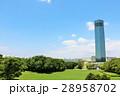 晴れ 公園 広場の写真 28958702